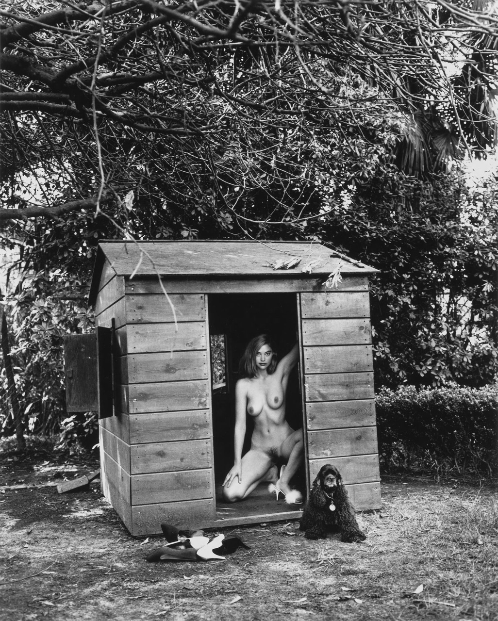 Domestic Nude VII by Helmut Newton