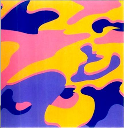 Camouflage Print Portfolio by Andy Warhol