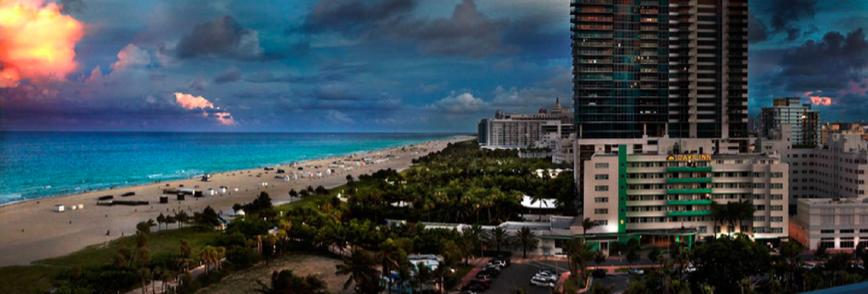 Dawn in Miami by David Drebin