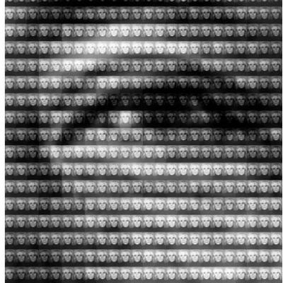 Mao vs Warhol DETAIL