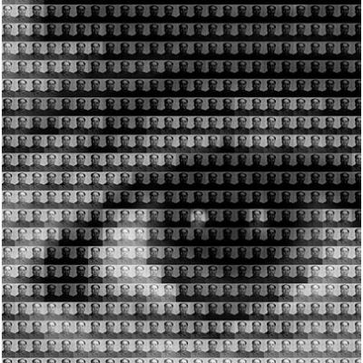 Warhol vs mao detail