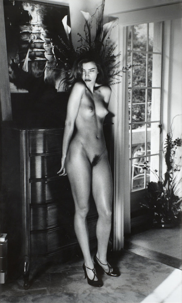 Domestic Nude V by Helmut Newton