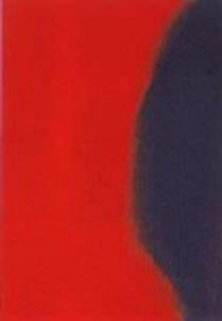 Shadow 205 by Andy Warhol