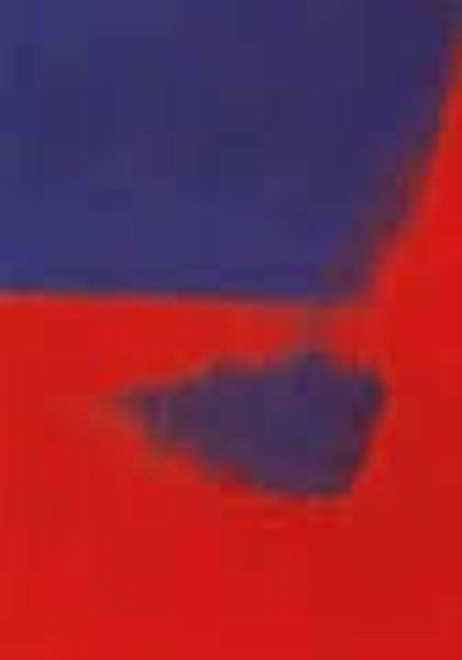 Shadow 208 by Andy Warhol