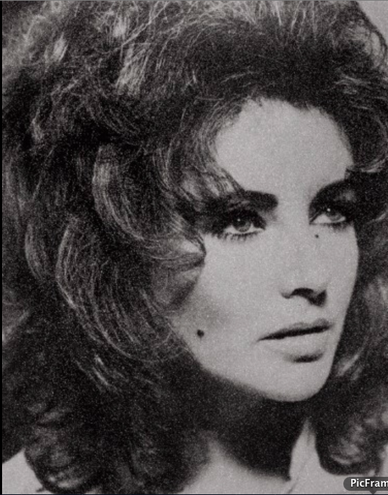 Liz Taylor (black and white) by Russelll young
