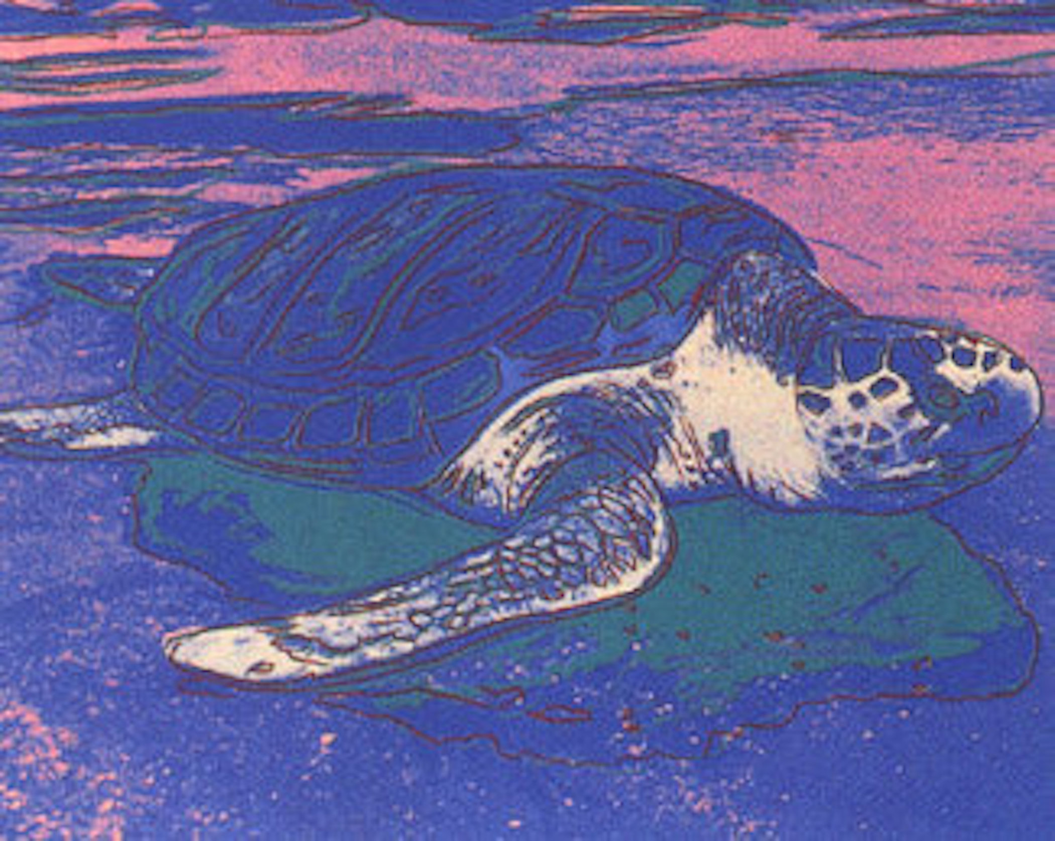 Sea Turtle by Andy Warhol