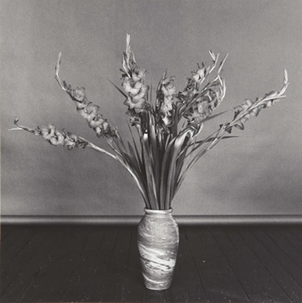 Gladioli by Robert Mapplethorpe