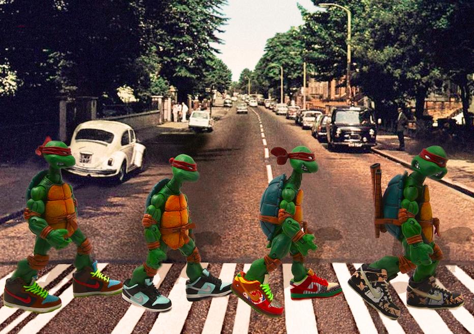 Turtle Crossing by Santlov