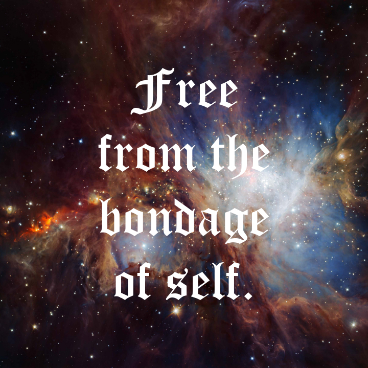 Free From The Bondage by Donny Miller