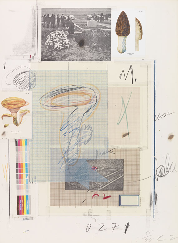 Natural History Part 1 Number VII by Cy Twombly