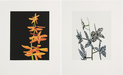 Untitled (orchid diptych) by Jonas Wood