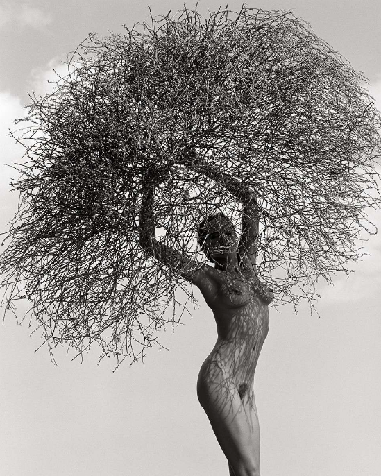 Neith With Tumbleweed by Herb Ritts