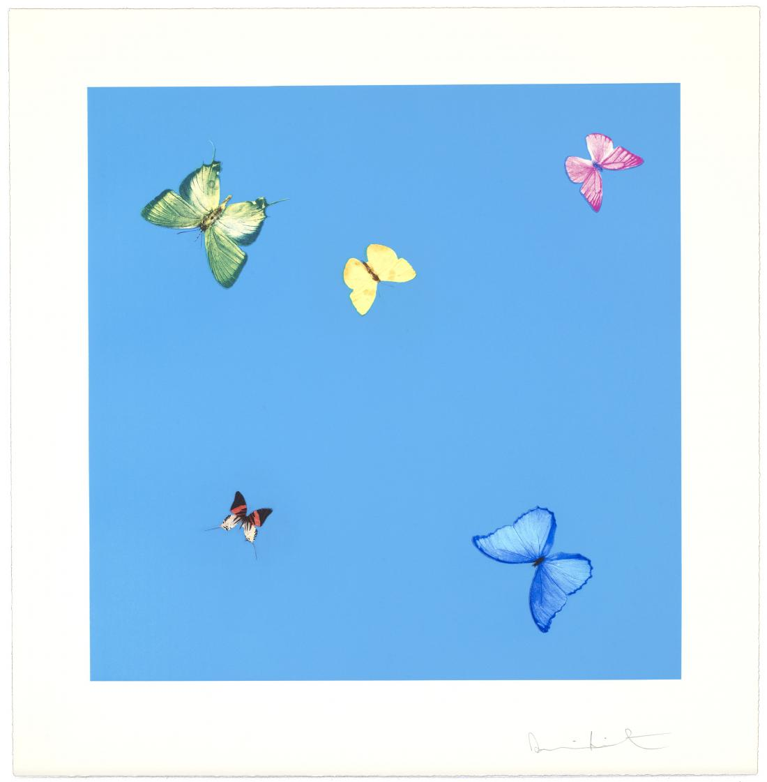 A Dream by Damien Hirst