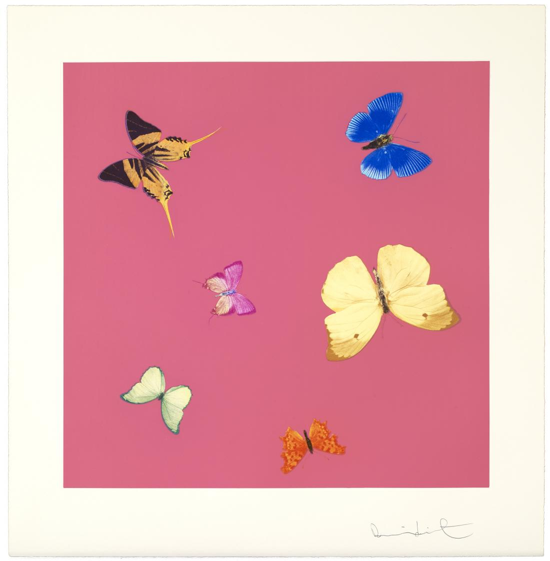 Lullaby by Damien Hirst