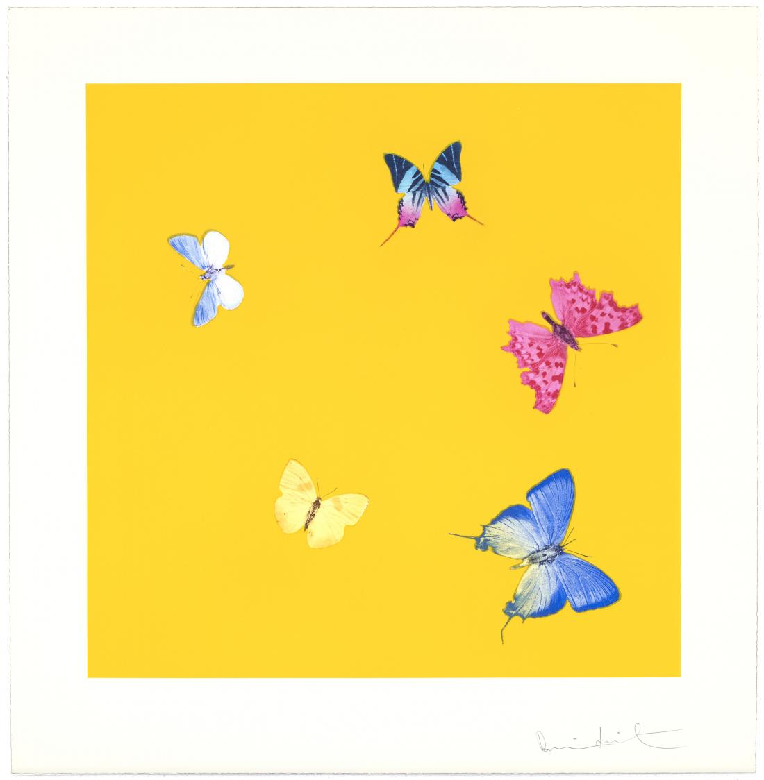Sweet Disorder by Damien Hirst