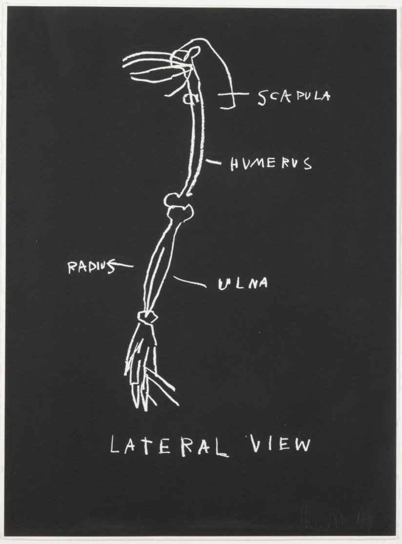 Lateral View by Jean-Michel Basquiat