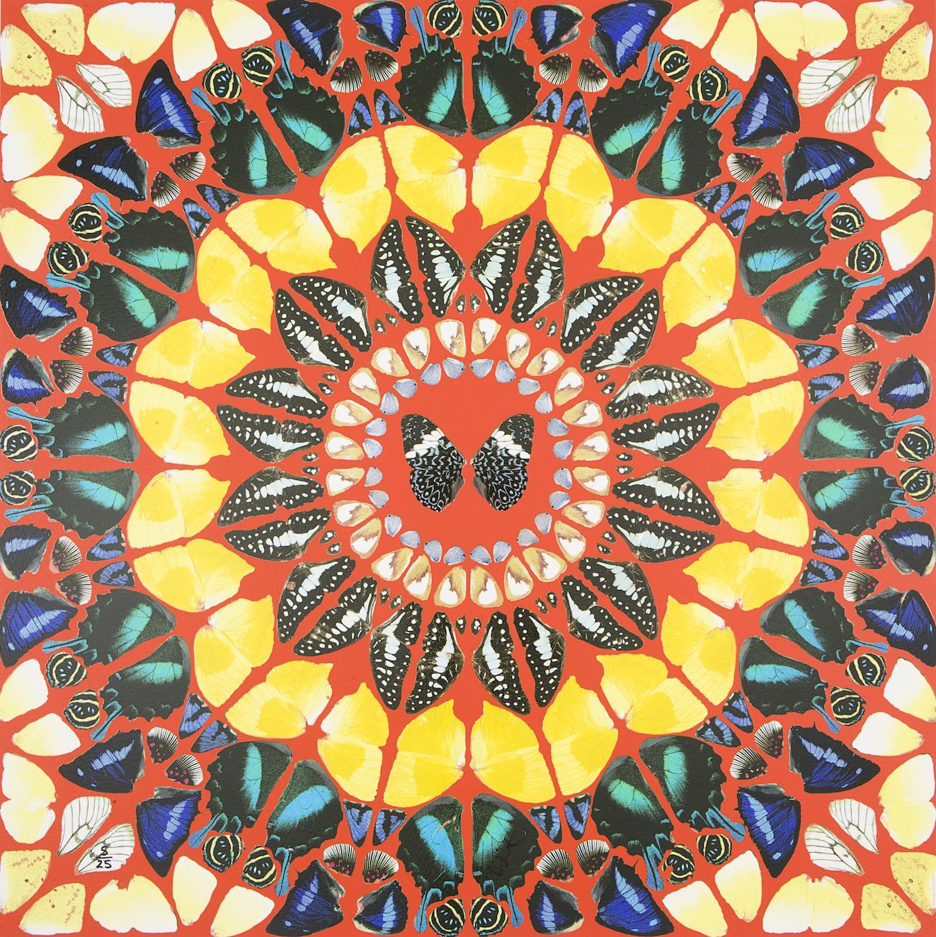 Psalm: Benedicam Domino by Damien Hirst