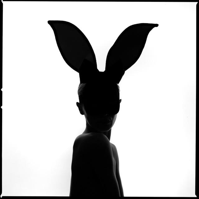 Bunny Silhouette by Tyler Shields