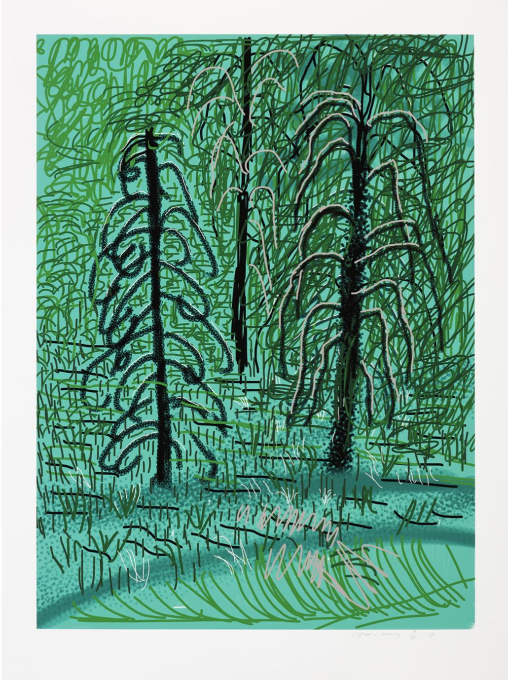 The Yosemite Suite No. 16 by David Hockney