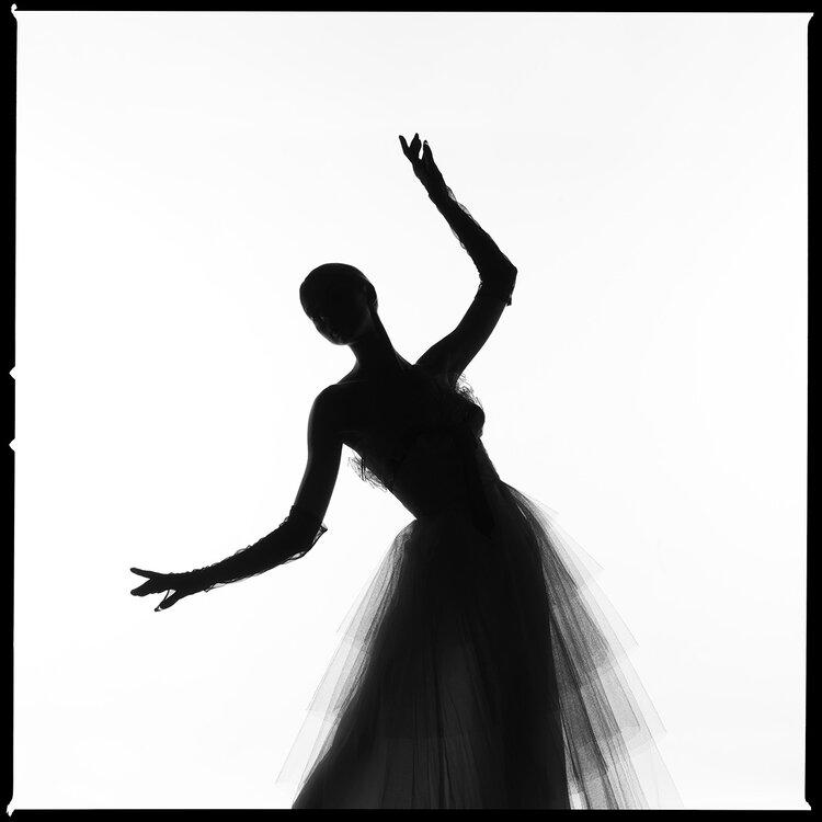 Dress Silhouette by Tyler Shields